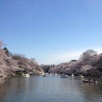 4/6/2012にDaisuke I.が井の頭恩賜公園で撮った写真