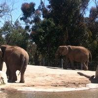 Das Foto wurde bei Elephant Odyssey von Bethany C. am 4/16/2012 aufgenommen