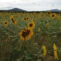 Foto scattata a Abbazia Di San Galgano da Erik U. il 7/23/2012