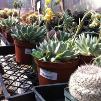 Photo Taken At Barton Springs Nursery By Andres C On 3 4 2017