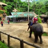Foto scattata a Maesa Elephant Camp da Govit T. il 8/12/2012