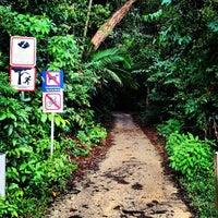 Foto scattata a MacRitchie Nature Trail da Chalith il 5/25/2012