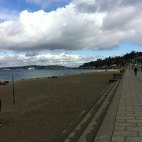 3/16/2012 tarihinde Richard A.ziyaretçi tarafından Alki Beach Park'de çekilen fotoğraf
