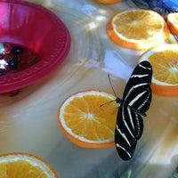 Foto tirada no(a) Desert Botanical Garden por Erica M. em 3/27/2012