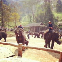 Foto scattata a Maesa Elephant Camp da Thanakorn B. il 2/25/2012