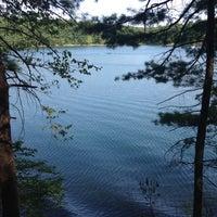 Image added by Samantha H. at Walden Pond State Reservation