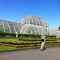 7/24/2012 tarihinde Anna R.ziyaretçi tarafından Royal Botanic Gardens'de çekilen fotoğraf