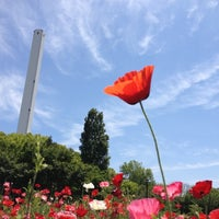 5/13/2012にymkxが蘆花恒春園 (蘆花公園)で撮った写真