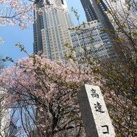 4/2/2012にhiji_sが新宿中央公園で撮った写真
