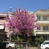 Photo prise au Kiper Pastanesi par Yawuz T. le4/28/2012