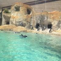 Foto tomada en Tulsa Zoo por Delaney B. el 4/21/2012
