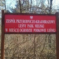 Park Miejski Podkowa Lesna Wojewodztwo Mazowieckie