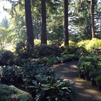 Weyerhaeuser Rhododendron And Bonsai Gardens Botanical Garden In Federal Way