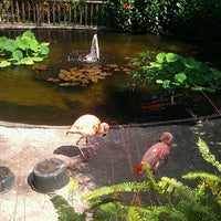 Das Foto wurde bei Sunken Gardens von Jennie am 3/26/2012 aufgenommen