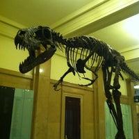 Foto diambil di Carnegie Museum of Natural History oleh Kate H. pada 2/25/2012