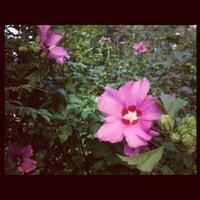 Foto tomada en Bessie Branham Park por Patricia Kalmeijer, Realtor (. el 6/30/2012