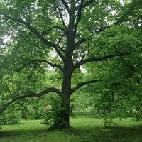 Снимок сделан в Arnold Arboretum пользователем Lindsey C. 5/11/2012