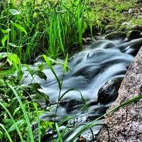9/10/2012 tarihinde ibo •.ziyaretçi tarafından Britzer Garten'de çekilen fotoğraf