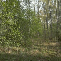 Foto tomada en Ватутинский лес por Tatiana O. el 4/29/2012