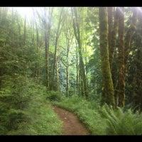 Снимок сделан в Forest Park - Wildwood Trail пользователем eric i. 6/14/2012