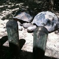3/24/2012에 Rosa S.님이 Cameron Park Zoo에서 찍은 사진