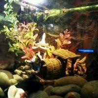 5/10/2012에 Jaime M.님이 Restaurant Flor Oriental에서 찍은 사진
