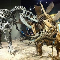 2/20/2012にJason S.がDenver Museum of Nature and Scienceで撮った写真