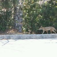 Foto tomada en Griffith Park Trail por Ed B. el 4/15/2012