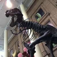 5/13/2012にChris R.がDenver Museum of Nature and Scienceで撮った写真
