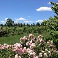 6/23/2012にKatelyn G.がCrossing Vineyards and Wineryで撮った写真