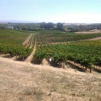 8/20/2012 tarihinde David Anthony Temple (.ziyaretçi tarafından Artesa Vineyards & Winery'de çekilen fotoğraf