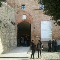 Photo prise au Museo del Tartufo par Stefano G. le3/11/2012
