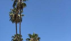 Pasadena Civic Plaza
