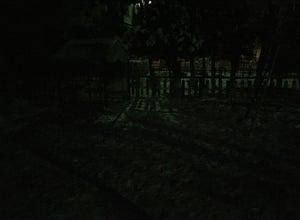 Детский Сад Барвинок 66