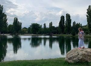 Пруд в парке им. Гагарина