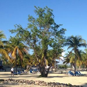 The Beach @ The RIU Hotel