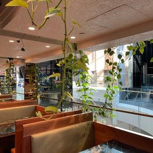 Babylon Rooftop and Garden Bar