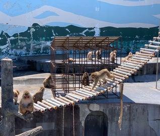 北海道の自然に癒される函館温泉旅
