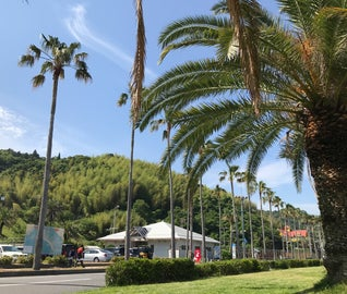 夏に後ろ髪を引かれながら、瀬戸内のハワイ「周防大島」を楽しむドライブ旅