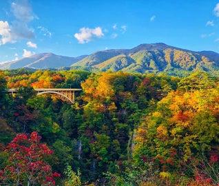秋の鳴子で、紅葉と温泉巡りを楽しむ旅