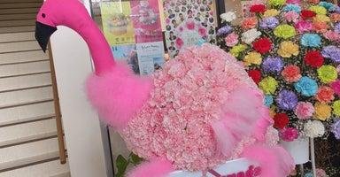 花ギャラリー めぐみこ