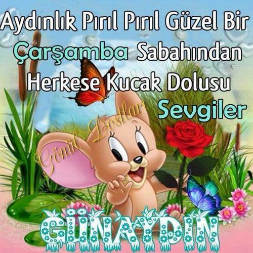 Photo by ALİ K