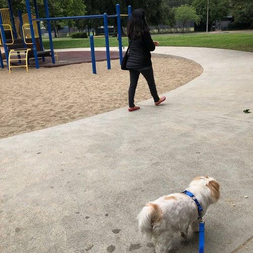 Four Oaks Park