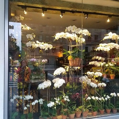 Lenox Hill Florist & Events