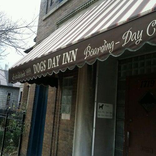 Dogs Day Inn