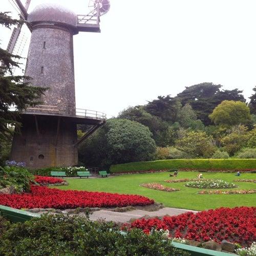 Queen Wilhelmina Tulip Garden
