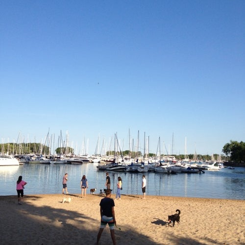 Belmont Harbor Dog Beach