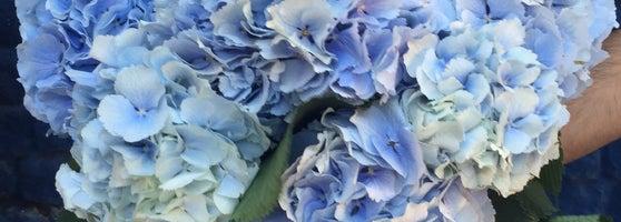 Доставка, ярославль цветы эдем