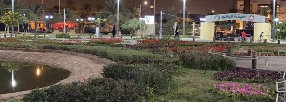 Flowers Garden Garden In المحمدية