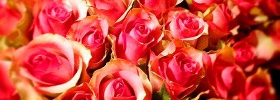 Оптовая цветочная база много цветов новогиреево — 5